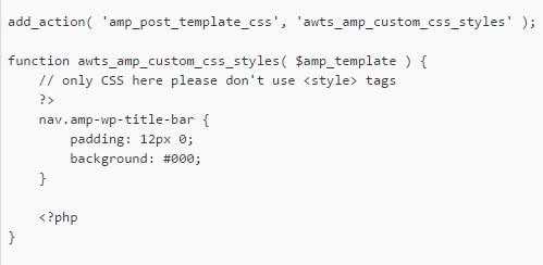 add Custom CSS in Amp template in WordPress